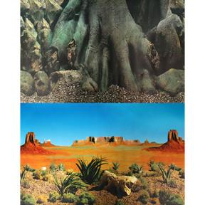 Aqua One Background 30.5x60cm Tree Trunk Desert #3 (29517)