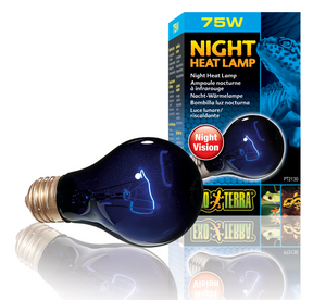 Exo Terra Night Glo Bulb - 75 Watt (PT2130)