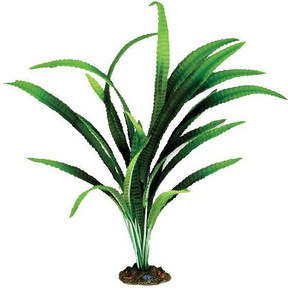 Aqua One African Onion Silk Plant - X-Large (24136)