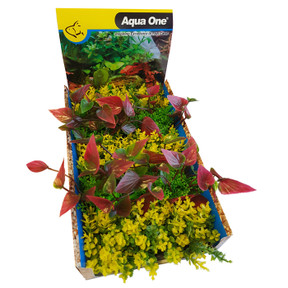 Aqua One Ecoscape Foreground Catspaw Yl/lilly R Mix Punnet 5pk (28366)