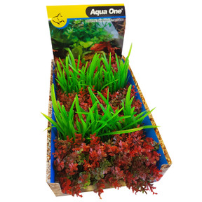Aqua One Ecoscape Foreground Catspaw R/lilaeopsis GN Mix Punnet 5pk (28369)