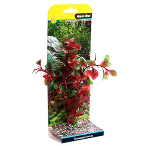 Aqua One Ecoscape Medium Hygro Red 20cm (28393)
