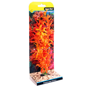 Aqua One Brightscape Medium Ludwigia Orange 20cm (28420)