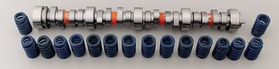 Camshaft, LS1/LS6 Hot Cam Kit GM, Includes Cam and LS6 Valve Springs