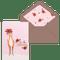 festive fawn medium 5 pack cards