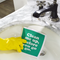 clean me up before you go go dishcloth, Wham!, George Michael