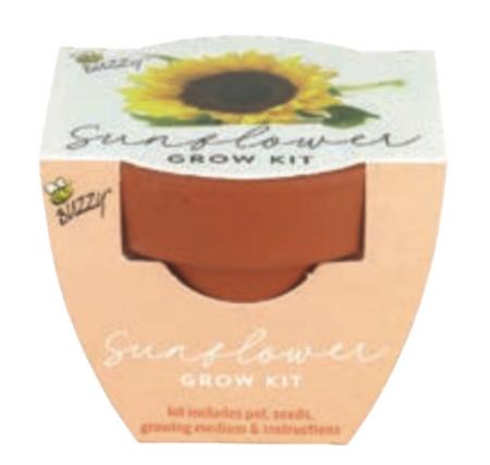 mini grow pot sunflower