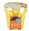 flower grow pail sunflower