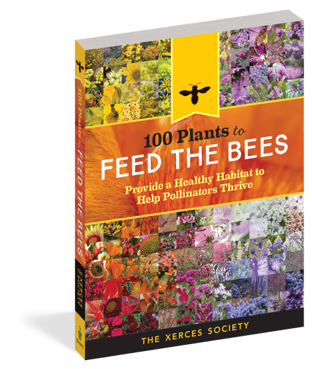 100 plants to feed the bees, front cover