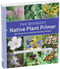 the midwest native plant primer, book