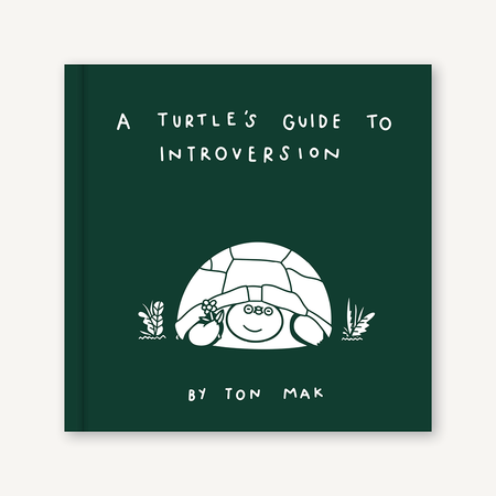 a turtle's guide to introversion, book