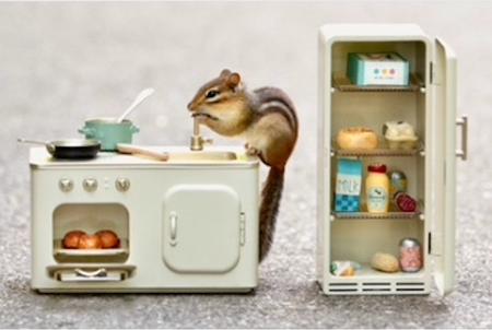 chipmunk in the kitchen greeting card