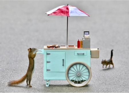chipmunk at the hotdog stand card