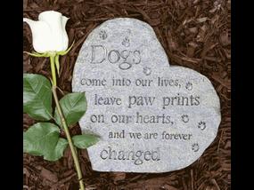 memory stone, grief, loss, pet loss, death, pet death