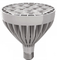 Array PAR 38 LED GU24 Base