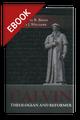 Calvin: Theologian and Reformer - EBOOK (Beeke & Williams, ed.)