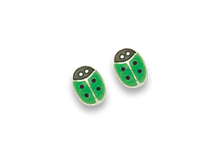 Silver Enamel Stud Earrings 5582GN