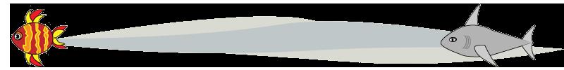 Fish and shark design element