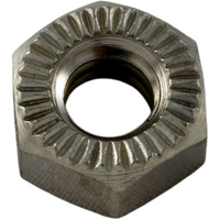 "Pentair H-Series Nut Hex 1/4""-20 98211400 (AMP-061-1326)"