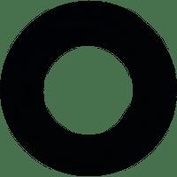 Pentair Aqualuminator Gasket, 2 pack, 79116800 (AMP-301-2413)