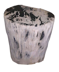 Petrified Wood - Stool - PT-STO-403