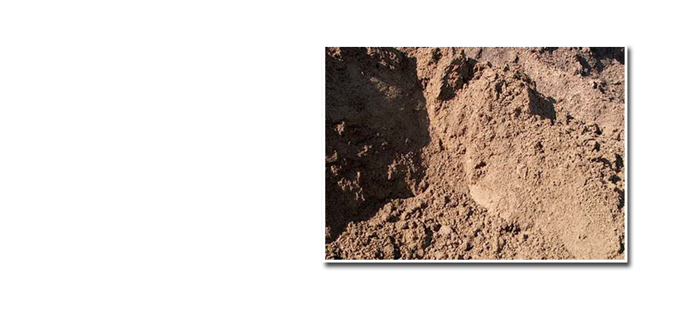 Loam and compost photo.
