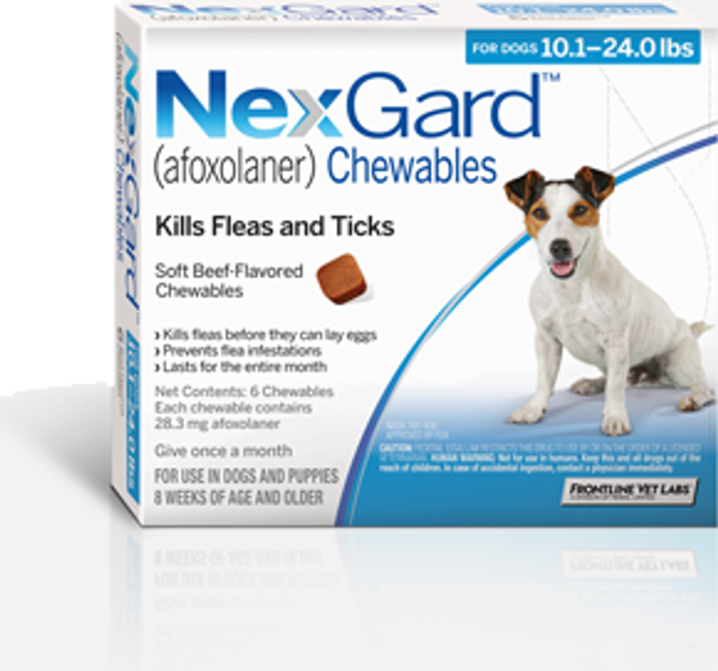 Nexgard for Dogs 10.1-24 lbs - 6 Pack