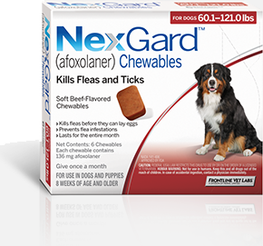 Nexgard For Dogs 60 1 121 Lbs 3 Pack Sierra Pet Meds