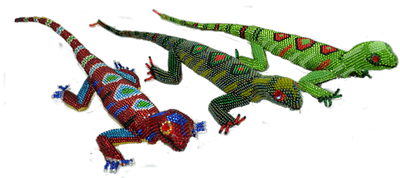 Our most colorful lizard we carry. Special request no problem just takes time.