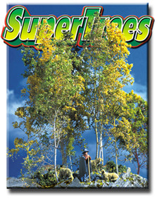 Scenic Express EX0214 Super Trees (Value Pack) 1/4 BUSHEL