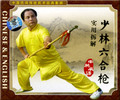 Shaolin Liuhe Spear and Practical Illustration