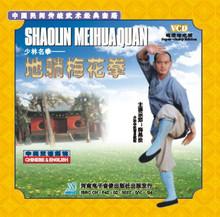 Shaolin Plum Blossom Boxing