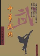 Chinese Wushu DVD