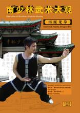 southern shaolin kung fu