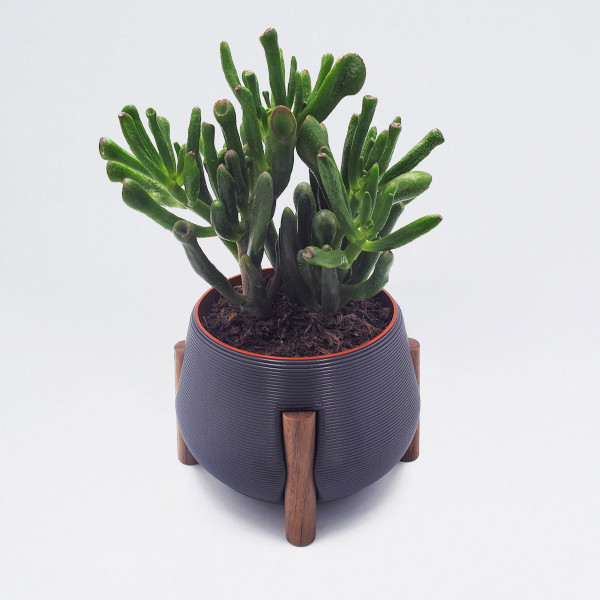 Short Grey Legged Planter by Studio Nilli at Of Cabbages and Kings