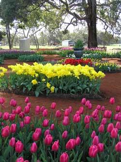 2005-open-garden-s-s.jpg