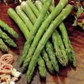 Asparagus -  UC157