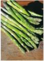 Asparagus Mary Washington