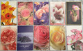 Blank Cards 10 Floral Designs