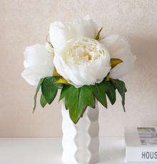 AF21082018F Flower + Vase