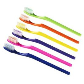 Prepasted Disposable Toothbrush