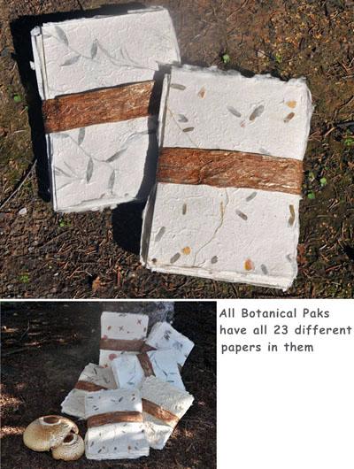 botanical-paper-paks-pakcombo-72-400-new.jpg