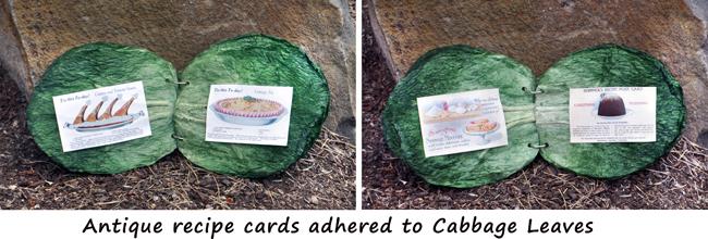 cabbage-leaf-book-comp-2-w-script-72-650.jpg