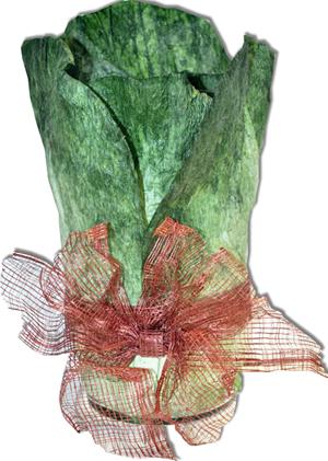 cabbage-leaf-vase-cutot-72-300.jpg