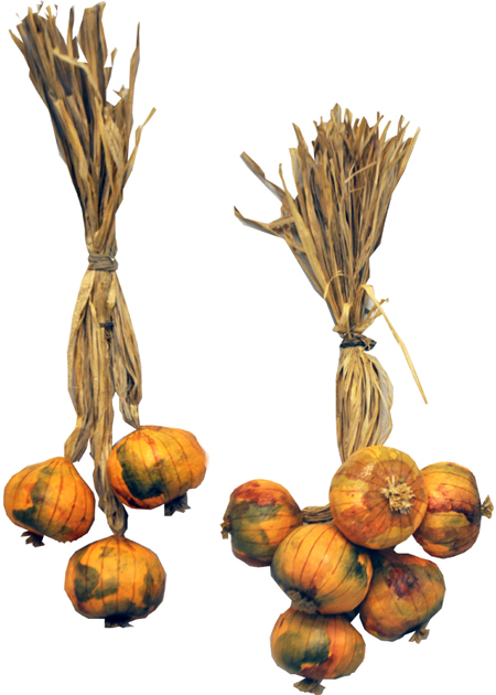 italian-onion-cluster-bunch-comp-72-450.jpg