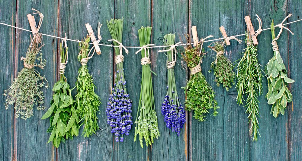 herbs.jpg