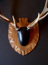 Arrowhead Elk