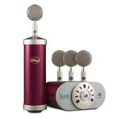 Bottle Microphone with Mic Locker / PSU in Raspberry Beret
