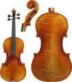 Core Select Violin - CS1707 Soil Model