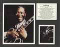 BB King Bio Art